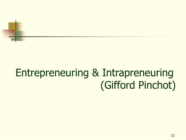 Entrepreneuring & Intrapreneuring
