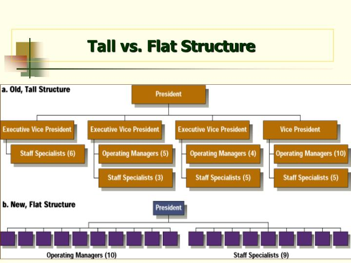 Tall vs. Flat Structure