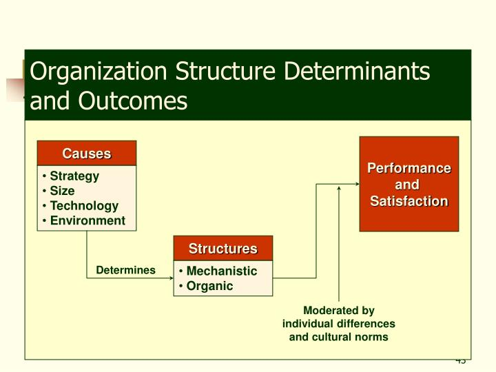 Organization Structure Determinants and Outcomes
