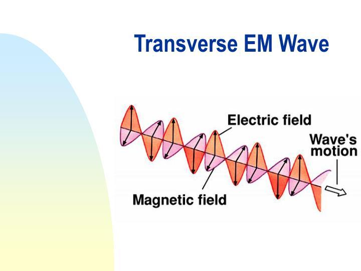 Transverse EM Wave