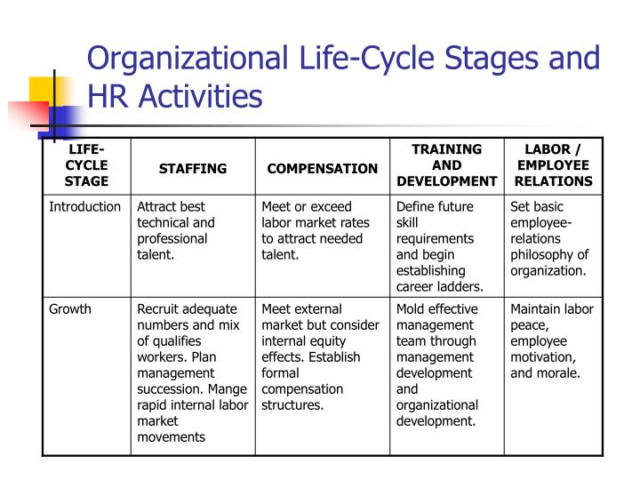 Organizational Life-Cycle Stages and HR Activities