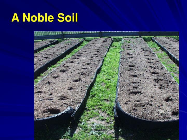 A Noble Soil