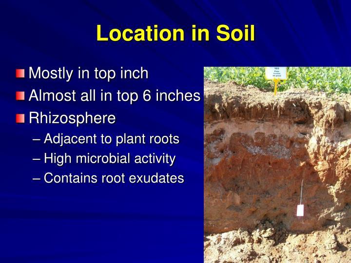Location in Soil