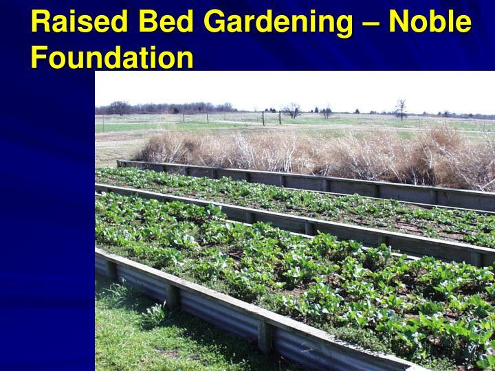 Raised Bed Gardening – Noble Foundation