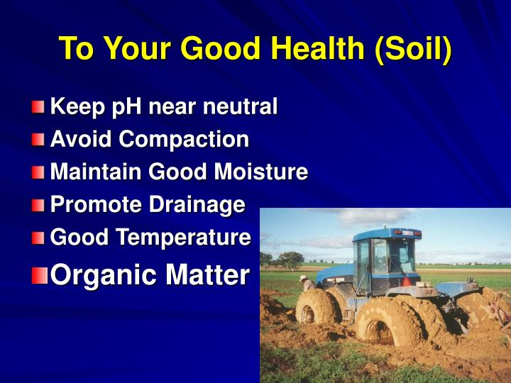To Your Good Health (Soil)