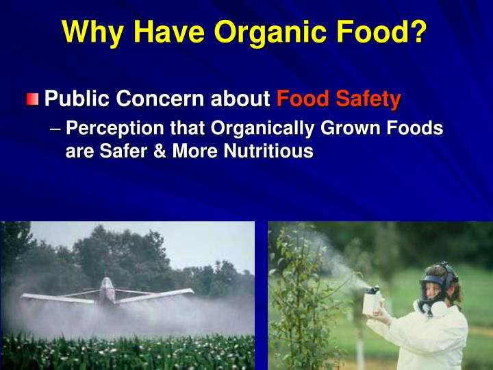 Why Have Organic Food?