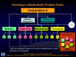 forming a dedicated project team