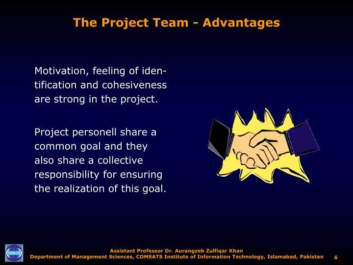 The Project Team - Advantages