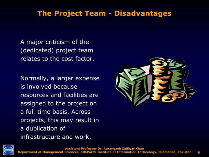 The Project Team - Disadvantages