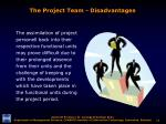 the project team disadvantages3