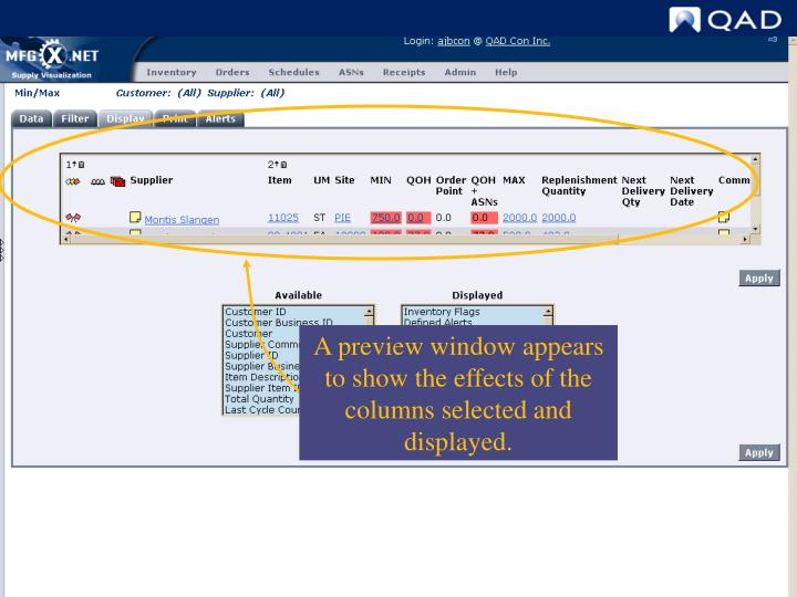 Display Options preview window