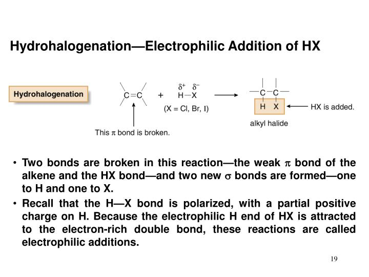 Hydrohalogenation—Electrophilic Addition of HX