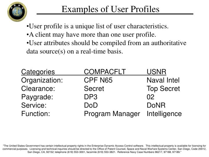 Examples of User Profiles