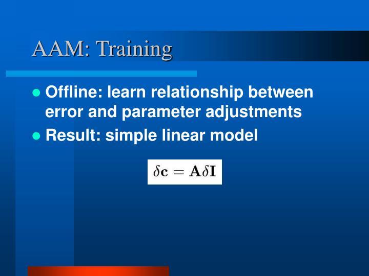 AAM: Training