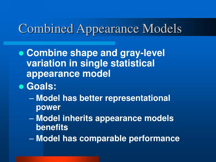 Combined Appearance Models