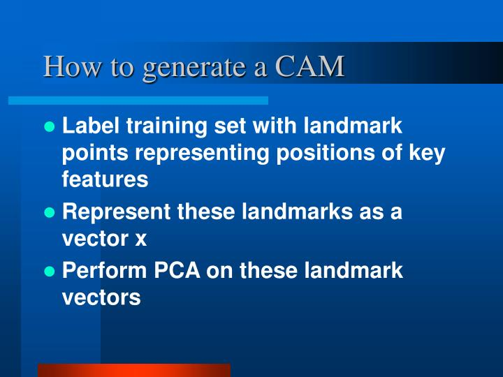 How to generate a CAM