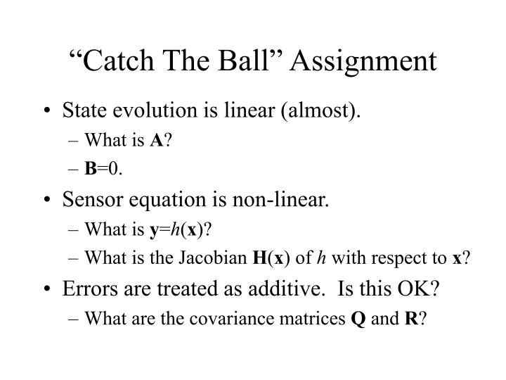 """Catch The Ball"" Assignment"