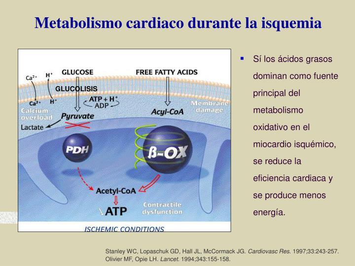 Metabolismo cardiaco durante la isquemia