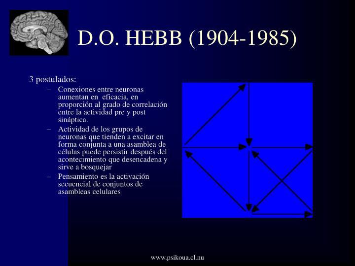 D.O. HEBB (1904-1985)