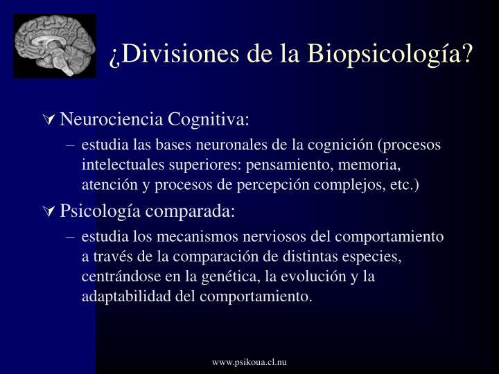 ¿Divisiones de la Biopsicología?