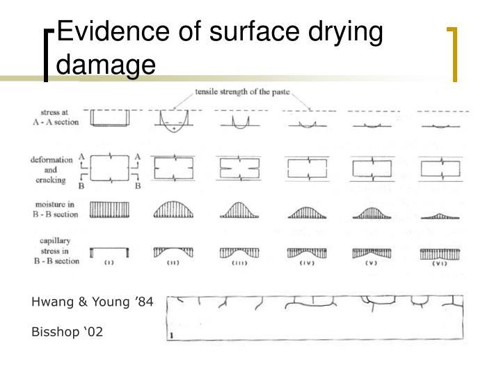 Evidence of surface drying damage