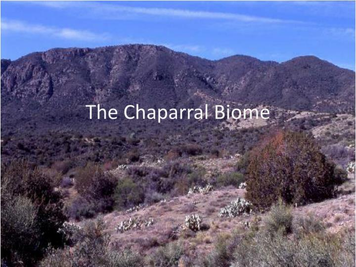The chaparral biome