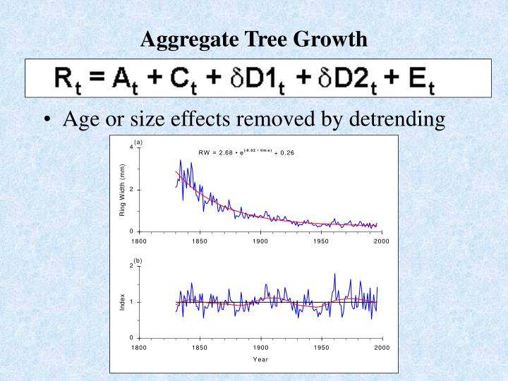 Aggregate Tree Growth
