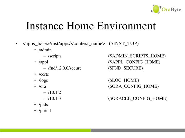 Instance Home Environment