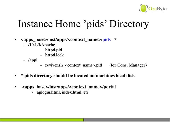 Instance Home 'pids' Directory