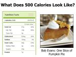 what does 500 calories look like