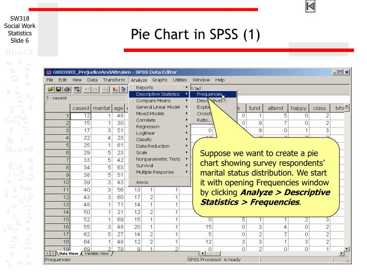 Pie Chart in SPSS (1)
