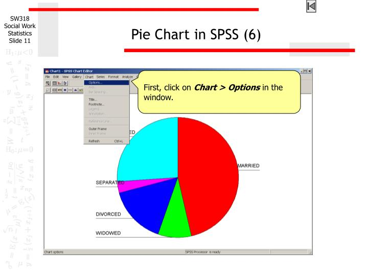 Pie Chart in SPSS (6)