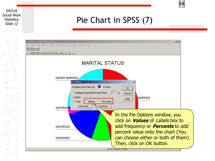 Pie Chart in SPSS (7)