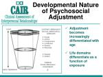 developmental nature of psychosocial adjustment