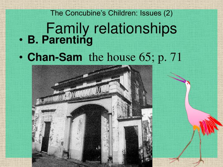 The Concubine's Children: Issues (2)