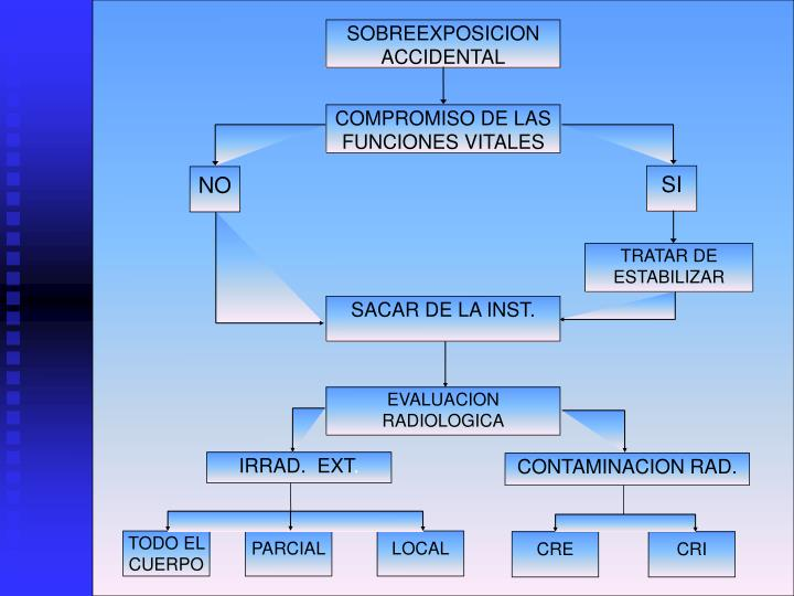 TODO EL CUERPO