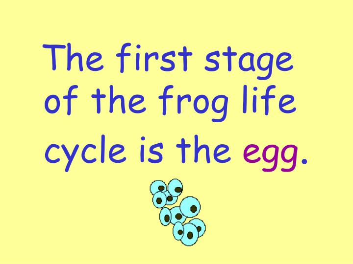 The first stage of the frog life cycle is the
