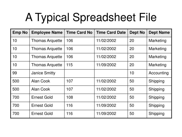 A Typical Spreadsheet File
