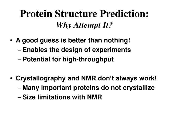 Protein Structure Prediction: