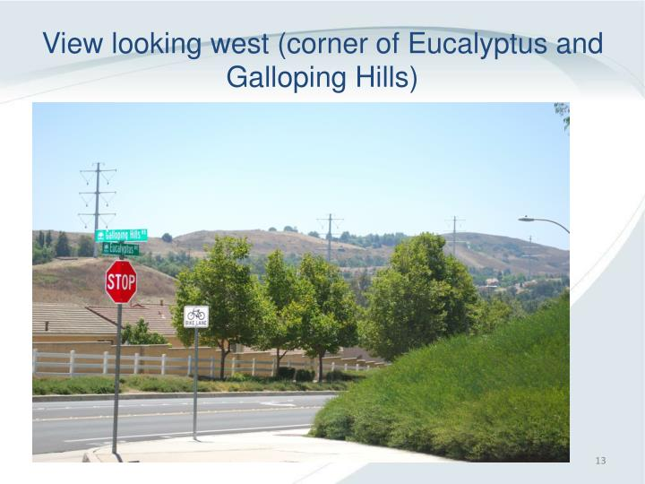 View looking west (corner of Eucalyptus and Galloping Hills)