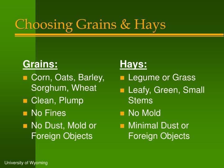 Grains: