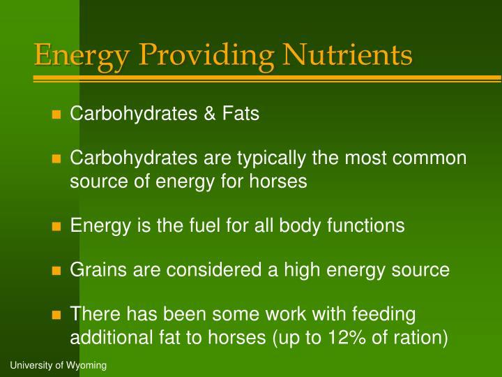 Energy Providing Nutrients
