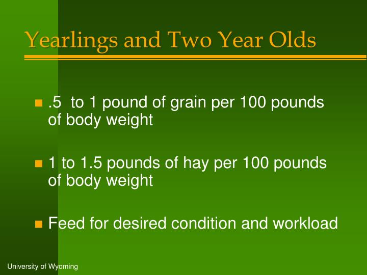 Yearlings and Two Year Olds