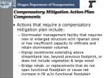 compensatory mitigation action plan components