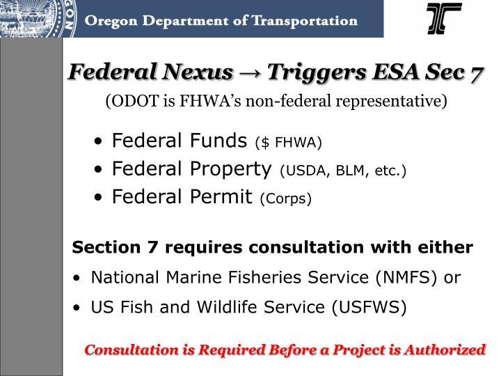 Federal Nexus
