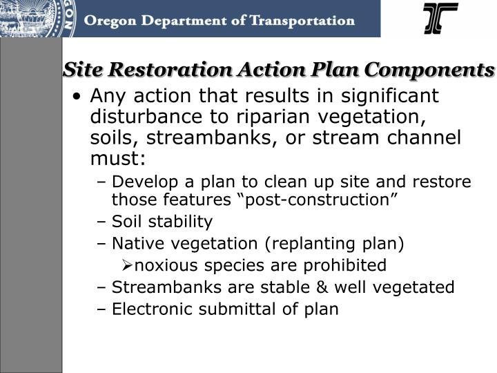 Site Restoration Action Plan Components