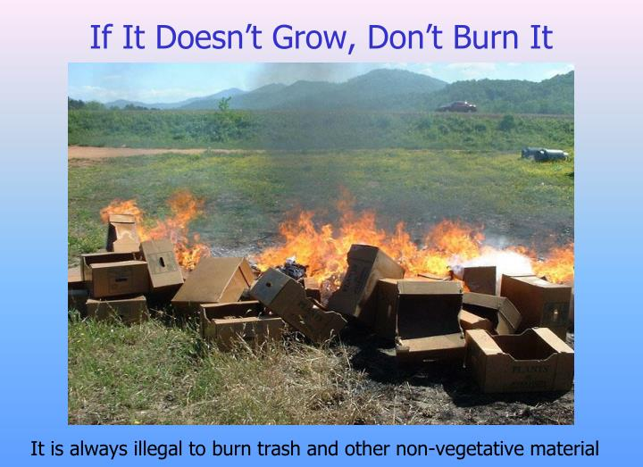 If It Doesn't Grow, Don't Burn It