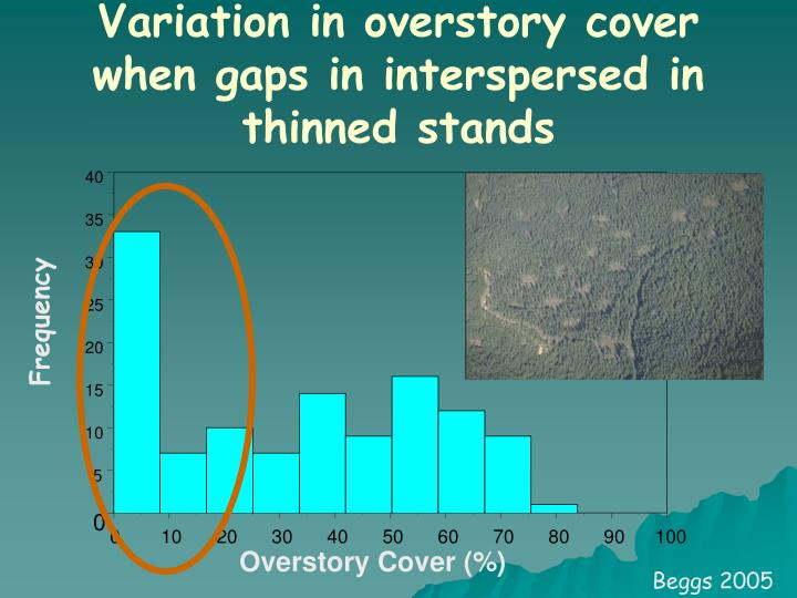 Variation in overstory cover when gaps in interspersed in thinned stands