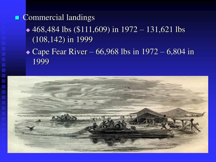 Commercial landings