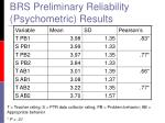 brs preliminary reliability psychometric results